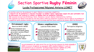 section-rugby