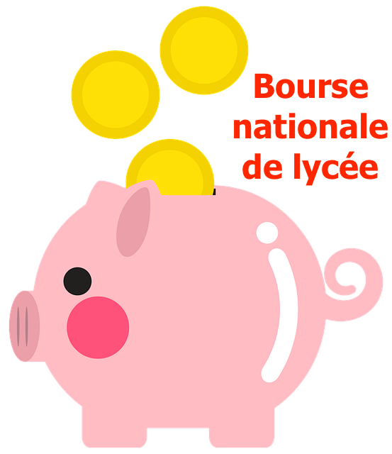 Bourses nationales de lycée – Année scolaire 2020-2021