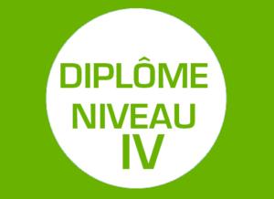 picto_Niveau4