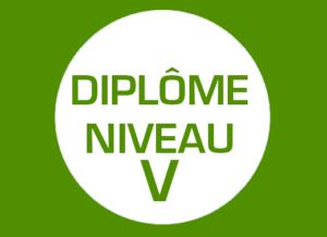 picto_NiveauV